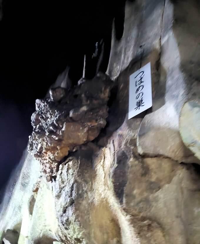 千仏鍾乳洞の入口を入ってすぐにある「つばめの巣」