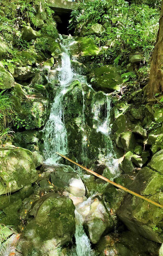 千仏鍾乳洞入口付近にあった滝
