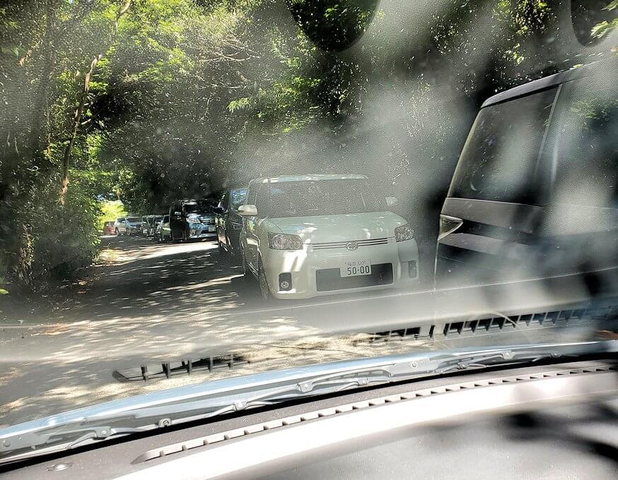 千仏鍾乳洞の駐車場が空くの待つ車の列-1