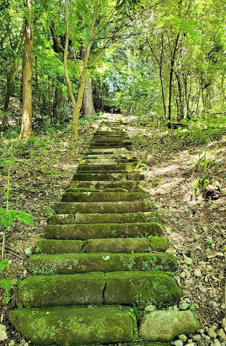 富貴寺境内の奥へと繋がる階段-1
