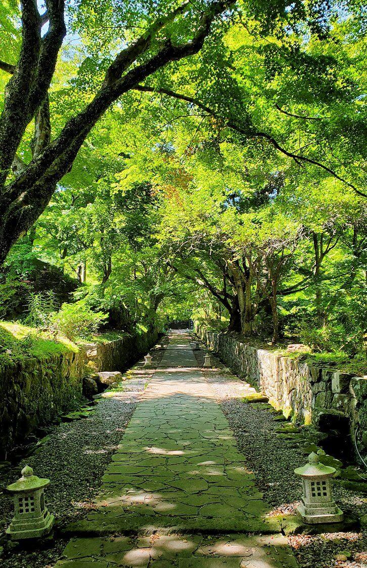両子寺へと進む石段は緑に囲まれている