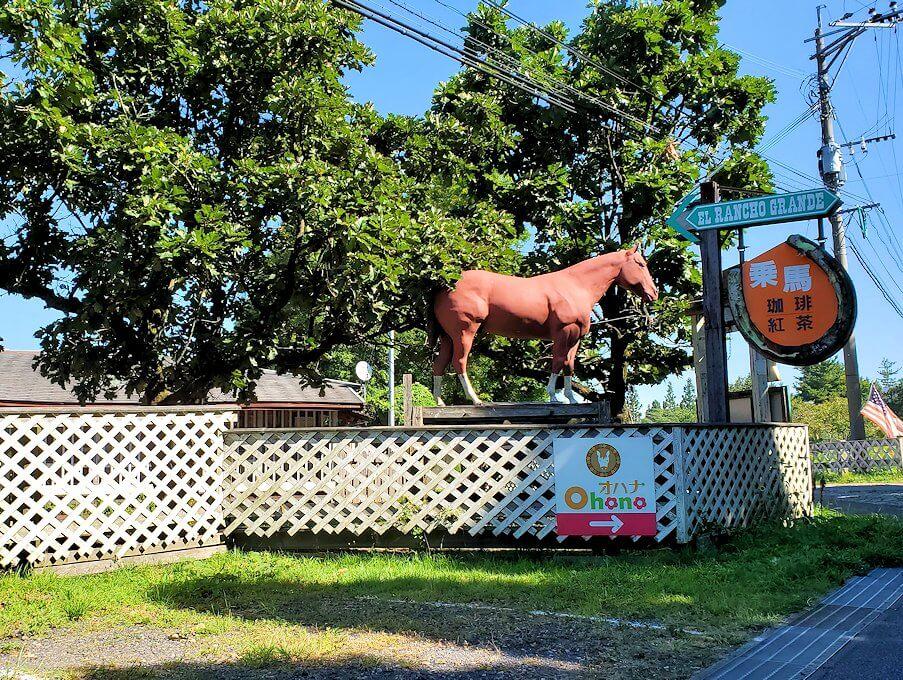 別府から「やまなみハイウェイ」を走り、阿蘇に向かう途中にあった馬ファーム