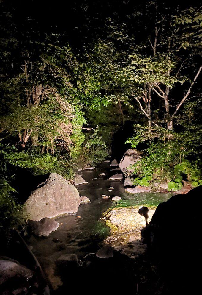 夜の阿蘇鶴温泉ロッジ村周辺で見つけた温泉宿に進む-1