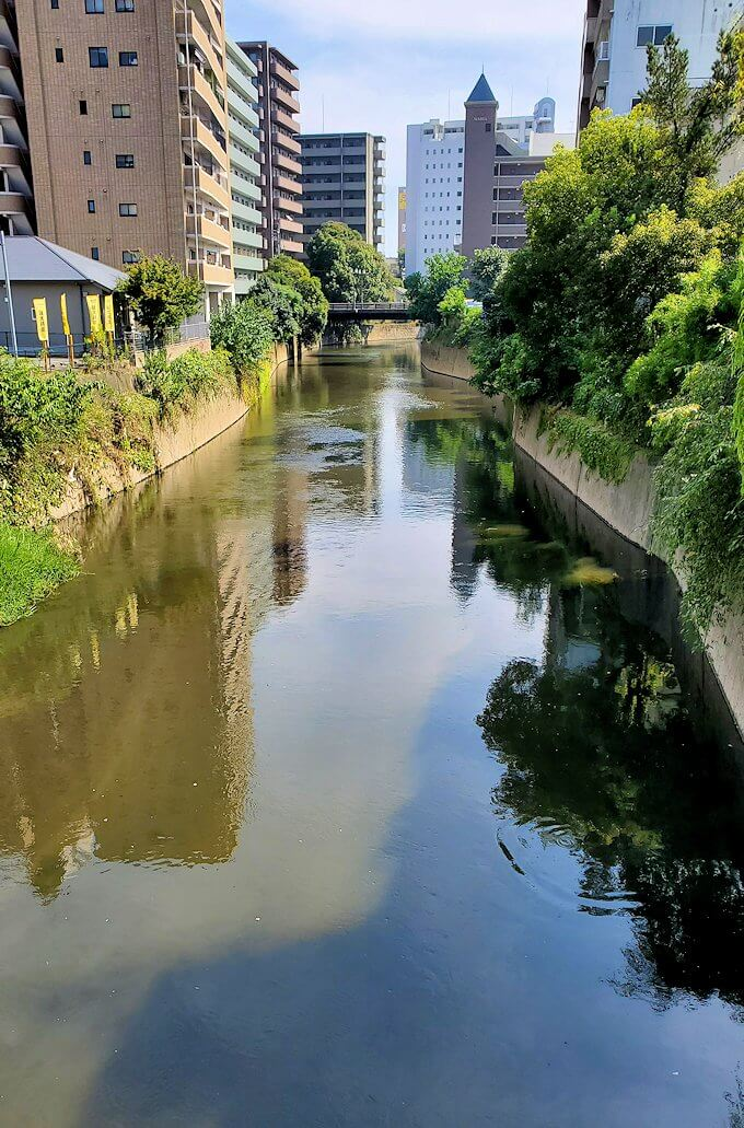 熊本駅から熊本城へと歩く途中に見えた船場橋からの眺め