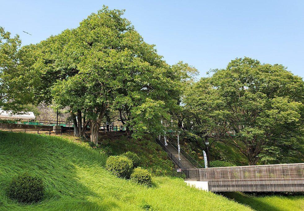 熊本城の本丸へ続く道