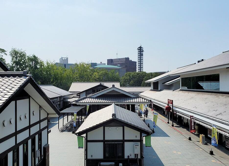 熊本城の桜の馬場の景色