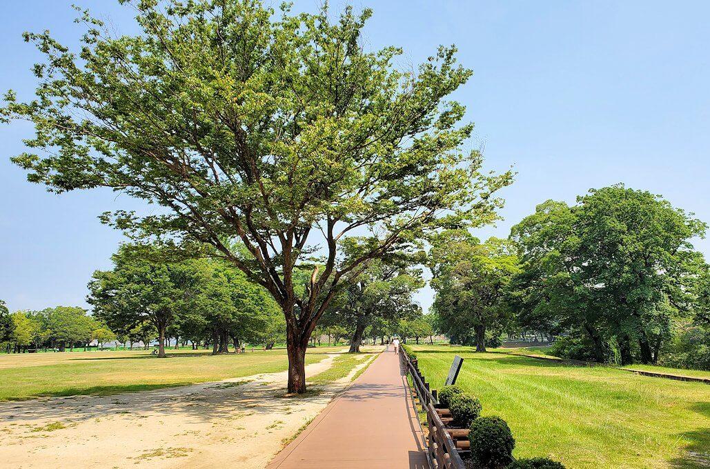 熊本城の二ノ丸公園を北に進む