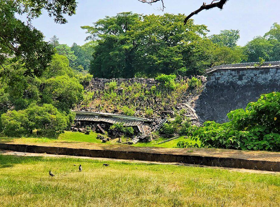 熊本城の二ノ丸公園から崩れた石垣を眺める