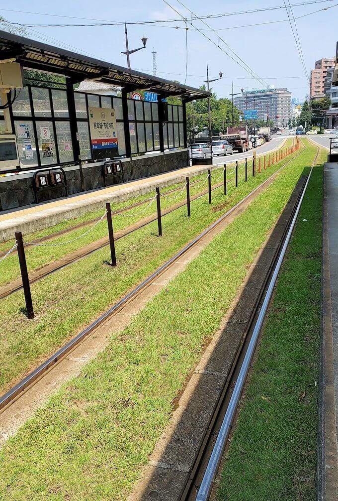 熊本市電路線内に整備されている芝生