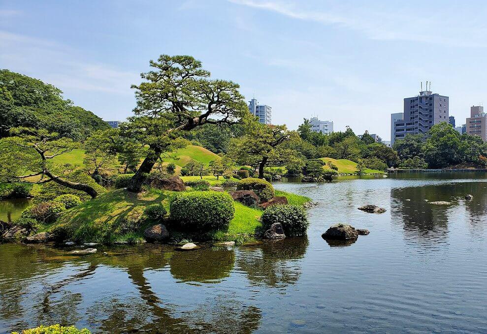 水前寺成趣園内の石橋から庭園を眺める