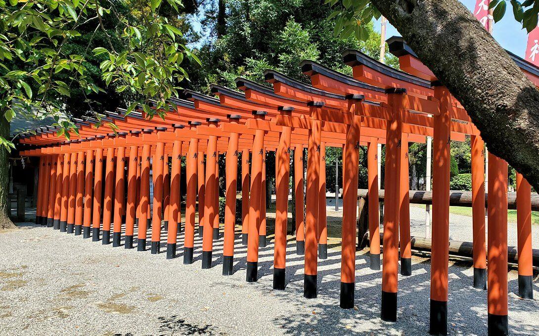 水前寺成趣園にある八幡宮の赤い鳥が並ぶ