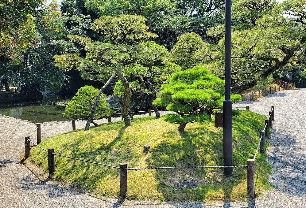 水前寺成趣園内の景色-1