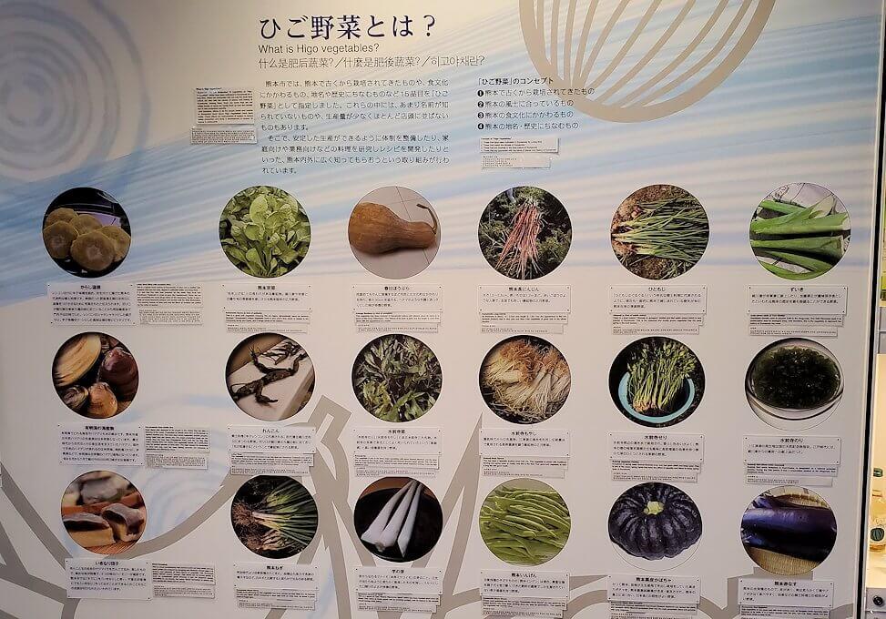 「くまもと森都心プラザ」にある郷土情報センターにあった熊本県の野菜のパネル