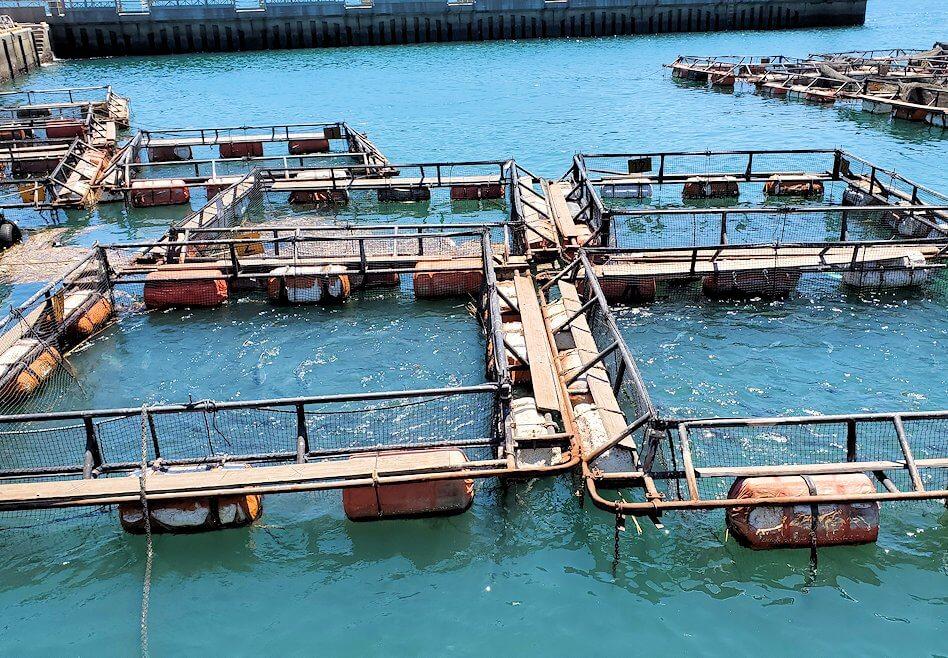 唐戸市場周辺の海にあったイケス