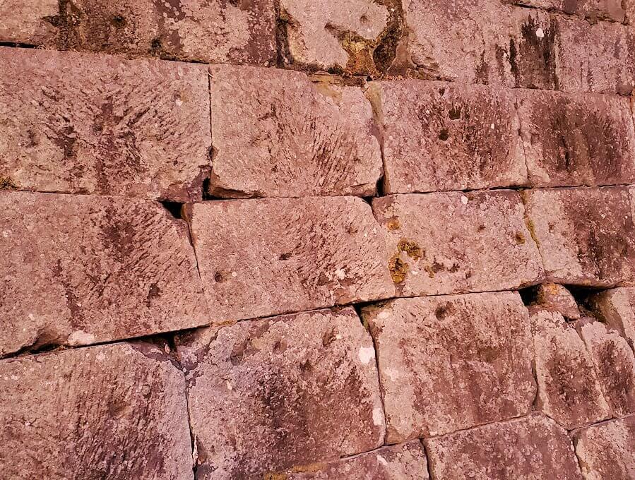 鶴丸城近くにある「西南戦争の銃弾跡が残る石垣」の景色を眺める