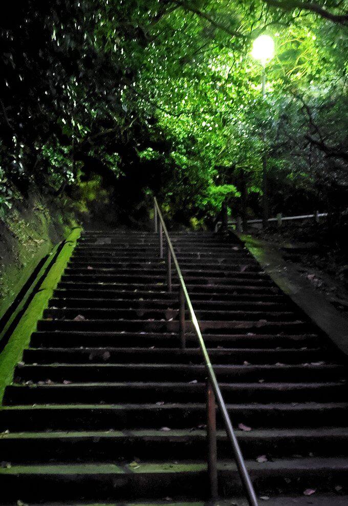 城山遊歩道を登っていく-2