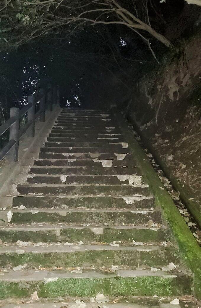 城山遊歩道を登っていくとだんだん暗くなってくる