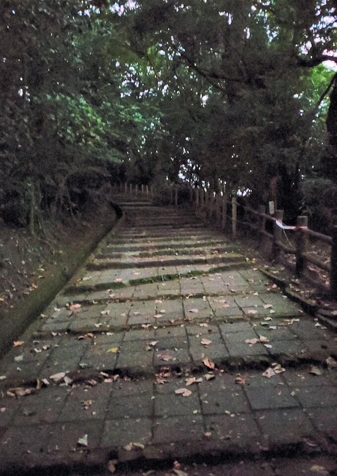 城山遊歩道を登っていく-1