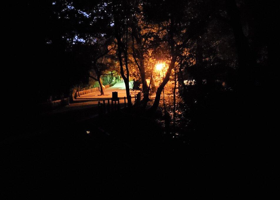 真っ暗な城山遊歩道を登っていく