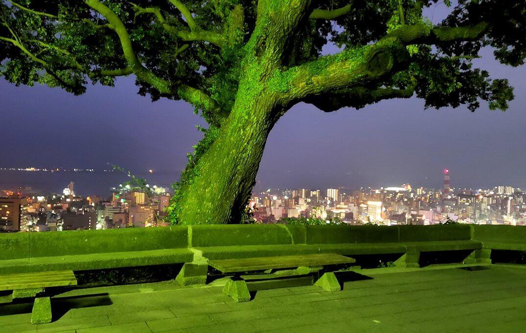 城山展望台の様子
