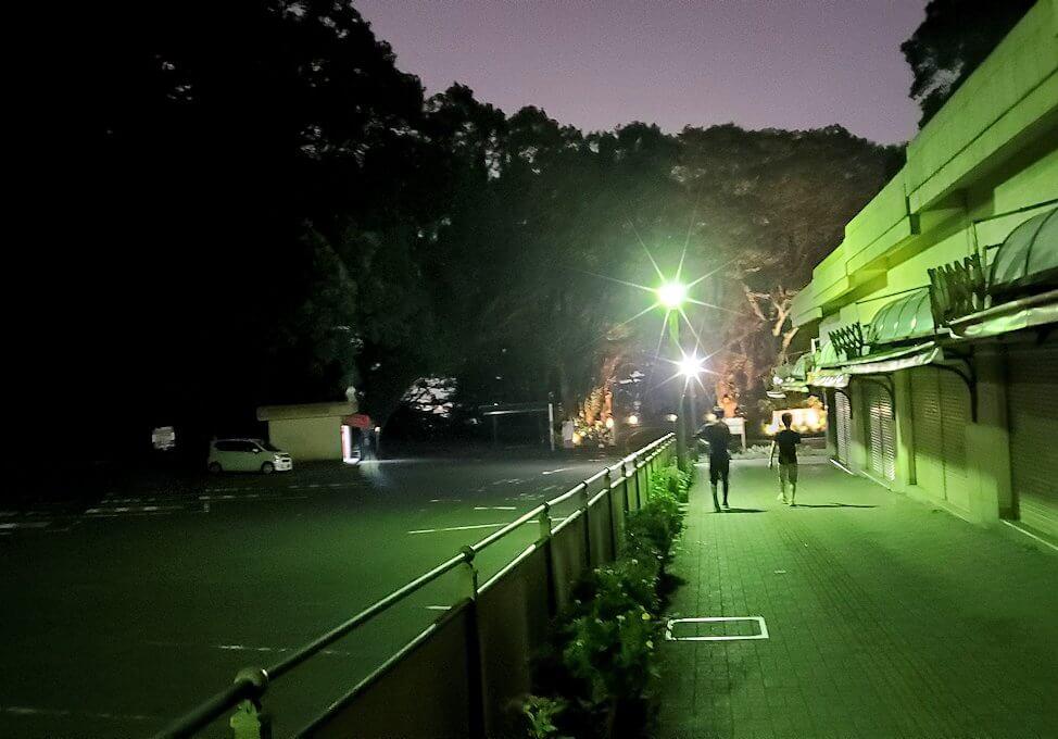 城山展望台から駐車場方向へと歩く-1