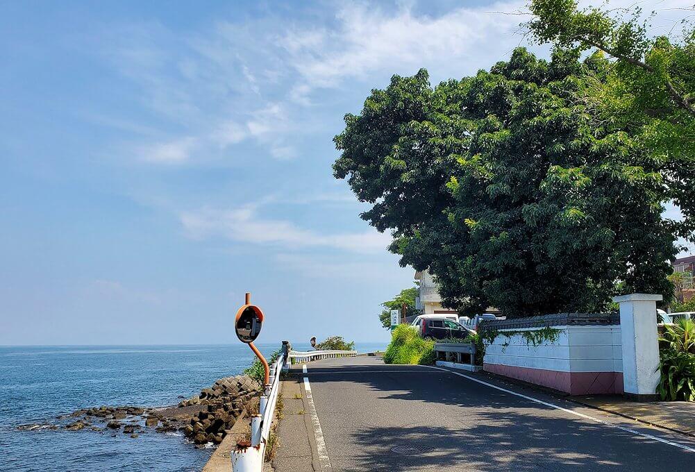 桜島の道路をサイクリングしながら見える景色-1