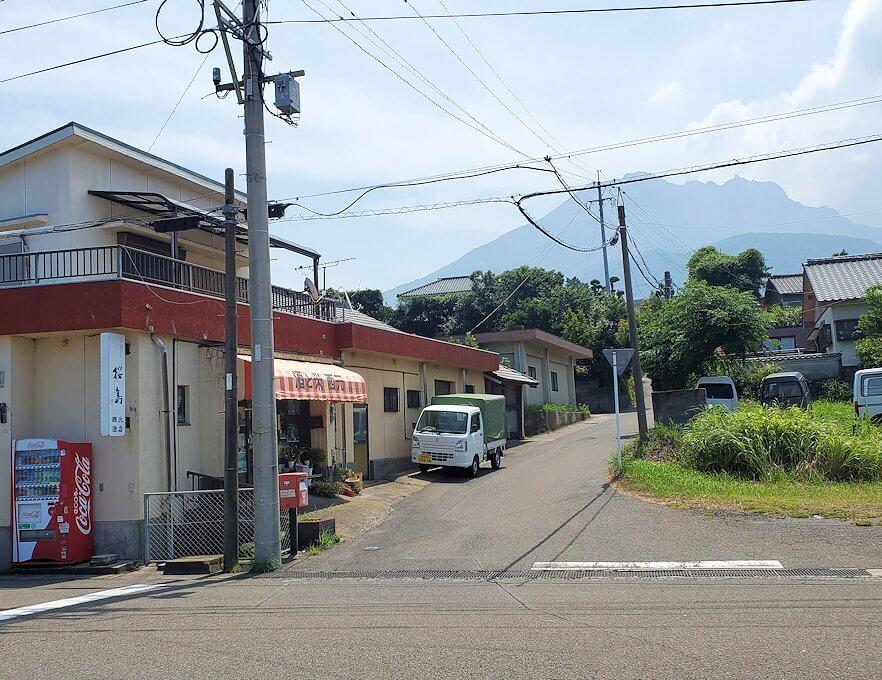 桜島にある写真スポット「藤野のアコウ群」近くの商店