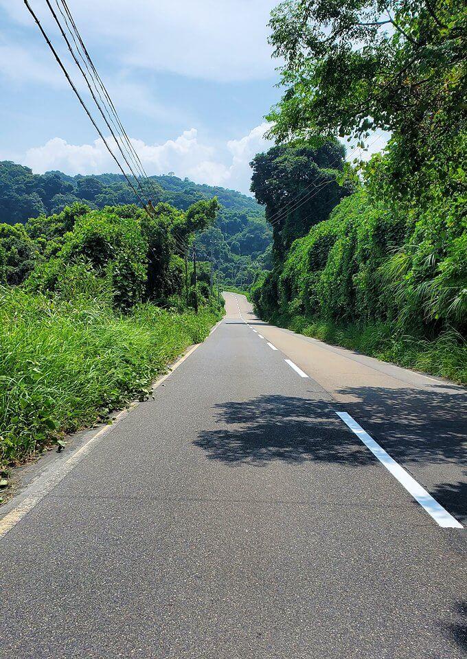 桜島のサイクリングで県道26号線を進む-2