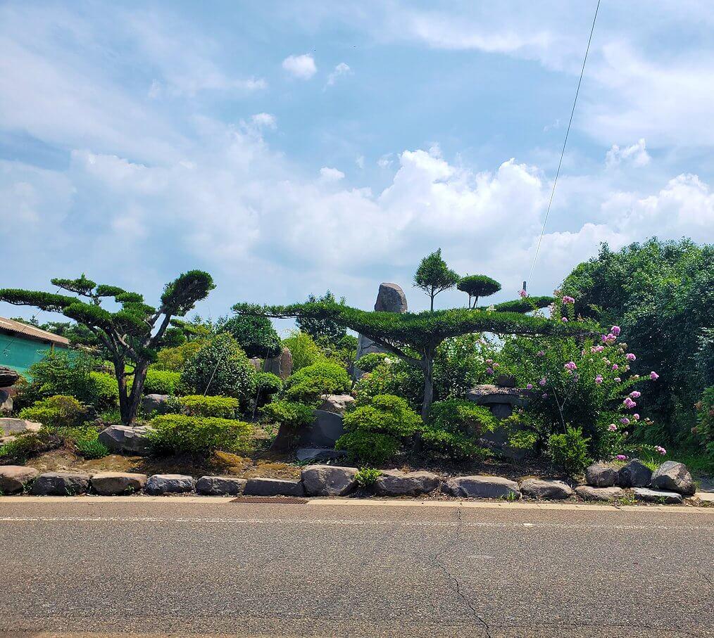 桜島のサイクリングで県道26号線途中にあった盆栽などが綺麗な家-1