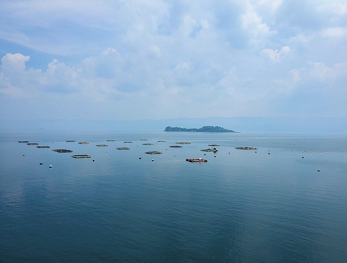 桜島の北東から眺める錦江湾