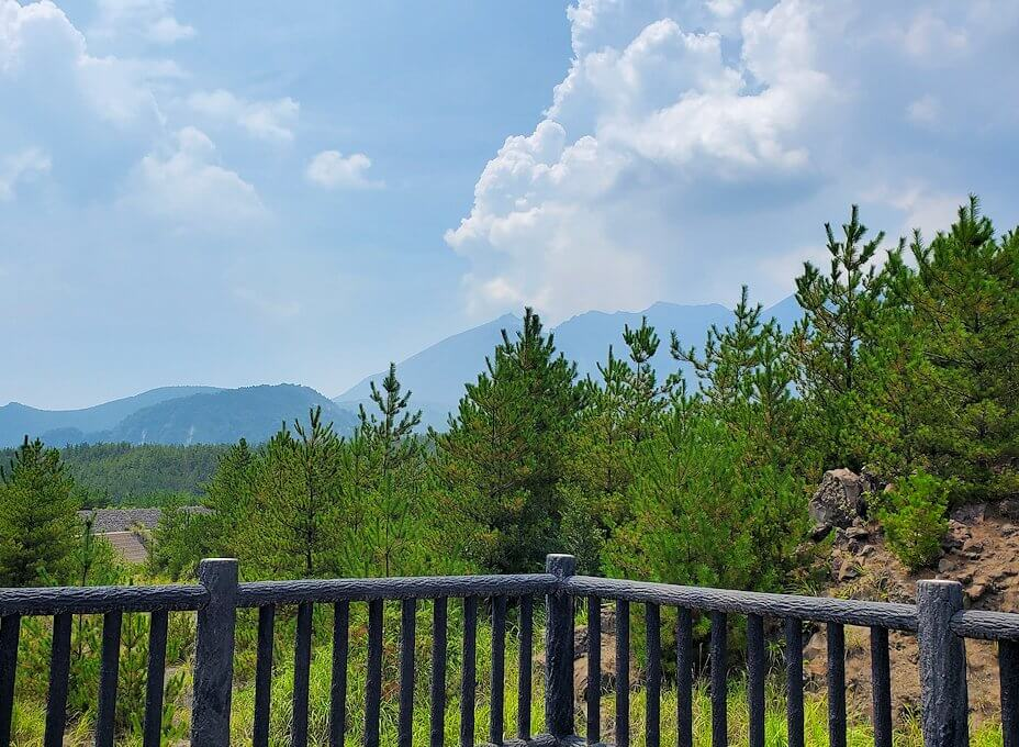 桜島26号線沿いにあった「昭和溶岩地帯」の展望台からの景色