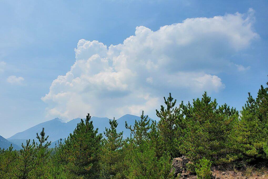 桜島26号線沿いにあった「昭和溶岩地帯」の展望台から見える桜島