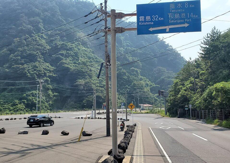 桜島サイクリングの分岐点
