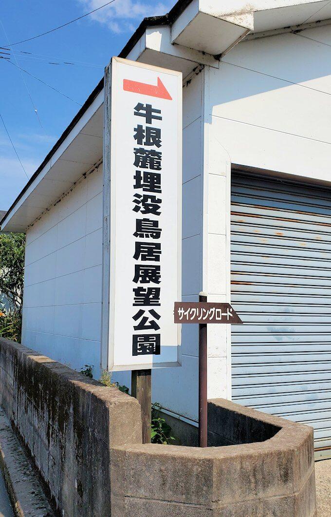 桜島サイクリングで垂水地区を進む