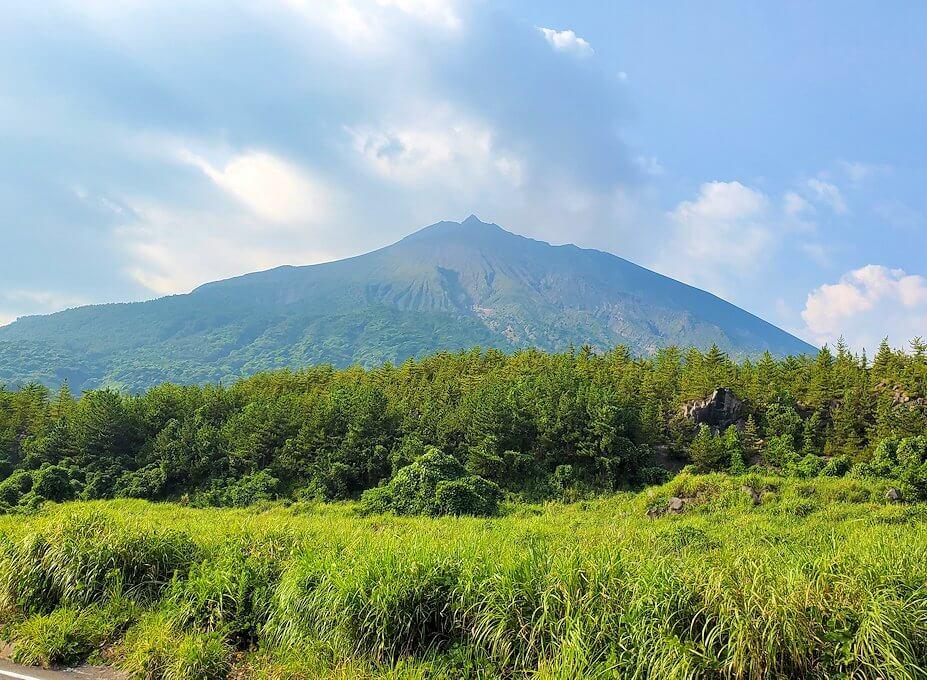 国道220号線の溶岩道路から見える桜島の姿