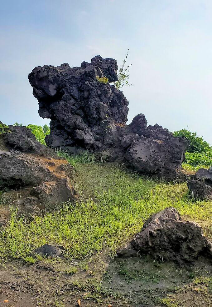 桜島にある西郷岩-1
