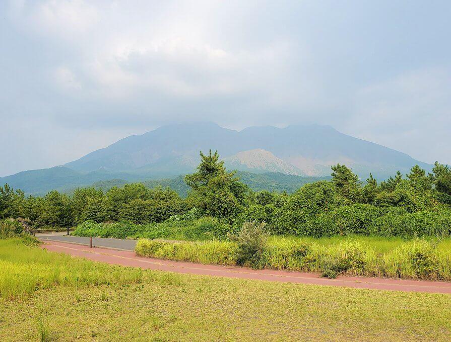 桜島の西側からの景色