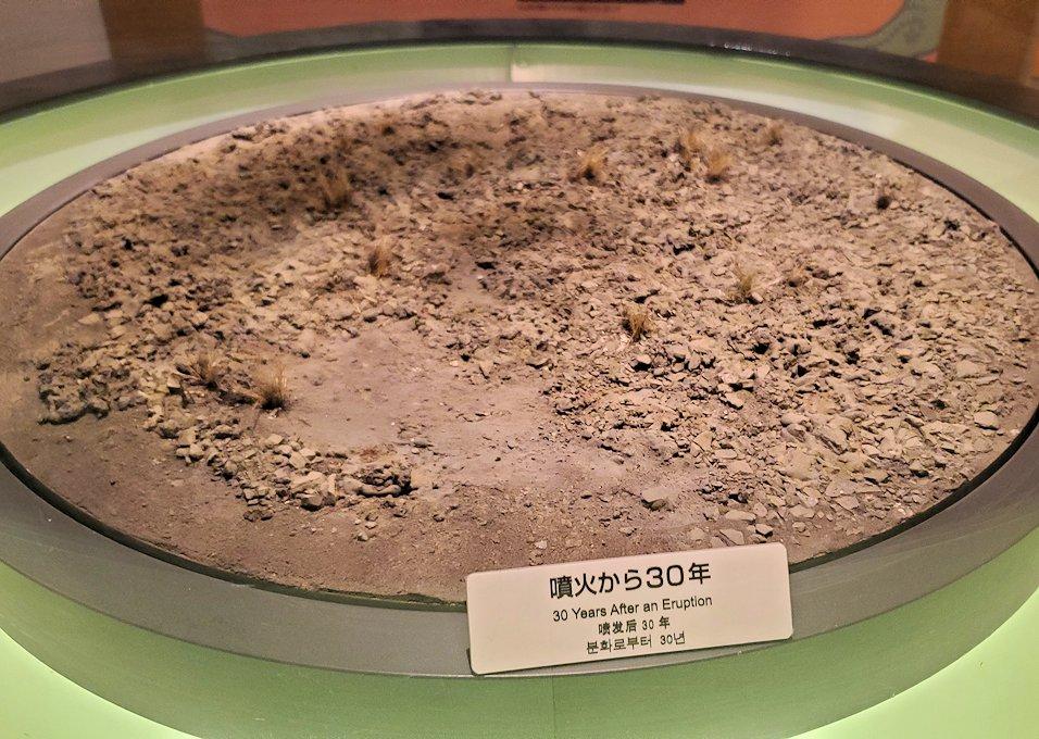 桜島ビジターセンターにある、噴火後の植生物の動向の説明-1
