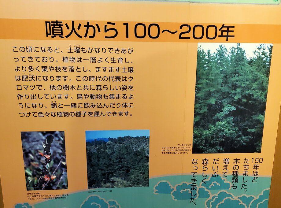 桜島ビジターセンターにある、噴火後100年の植生物の動向の説明