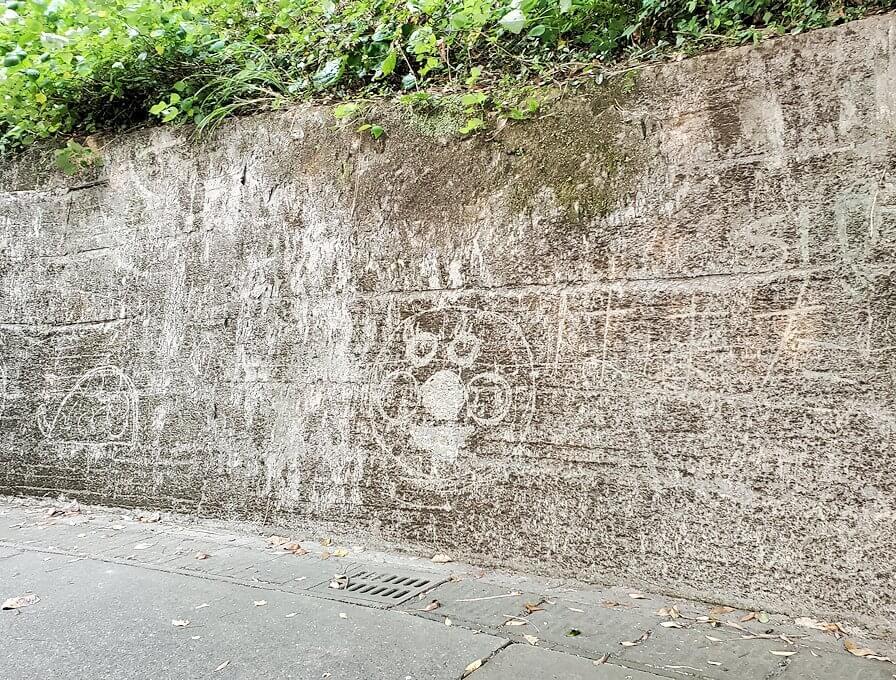 桜島自然恐竜公園へと登っていく時の壁