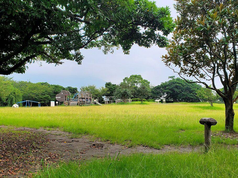 桜島自然恐竜公園の様子