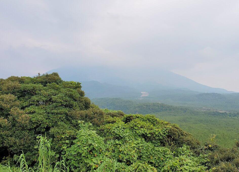 桜島自然恐竜公園にある展望台から桜島を眺める