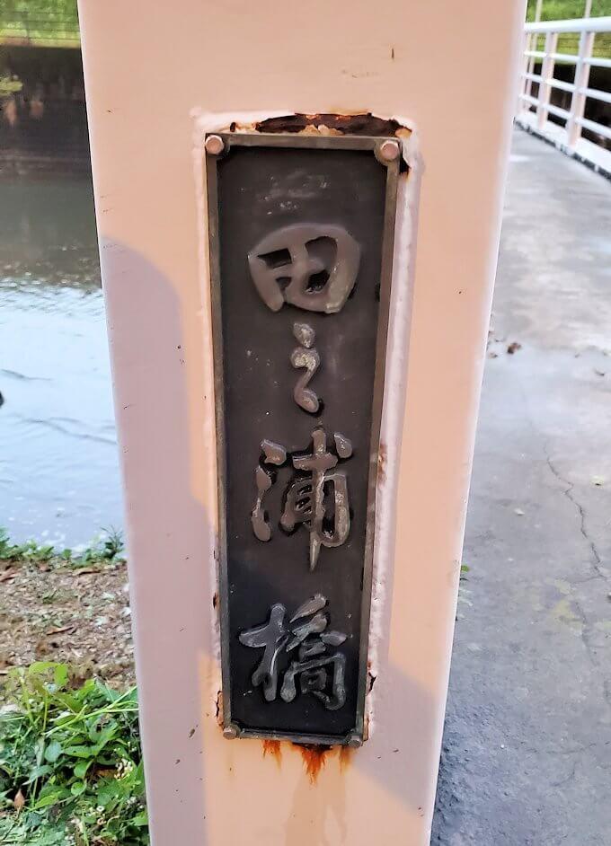 石橋記念公園内の橋を渡る-1