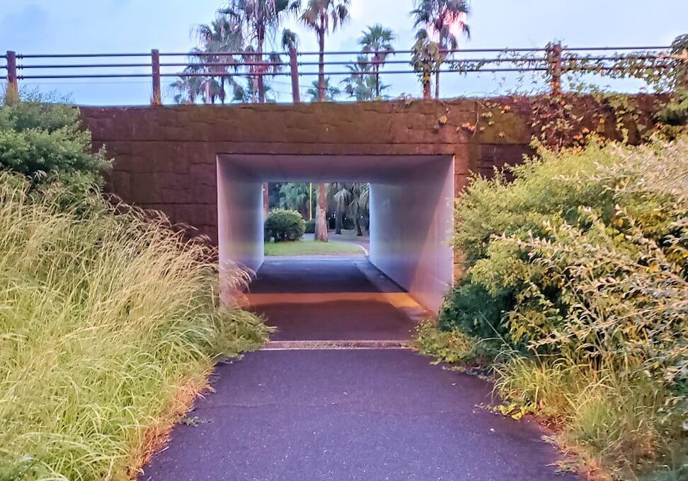 石橋記念公園内の橋の下を渡る
