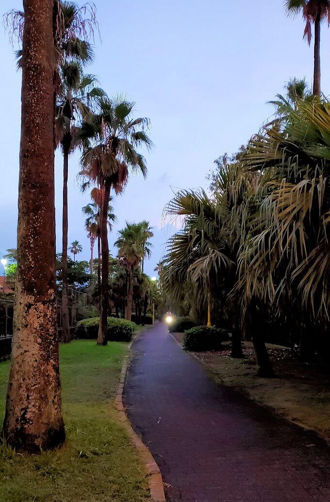 石橋記念公園を進んで行く