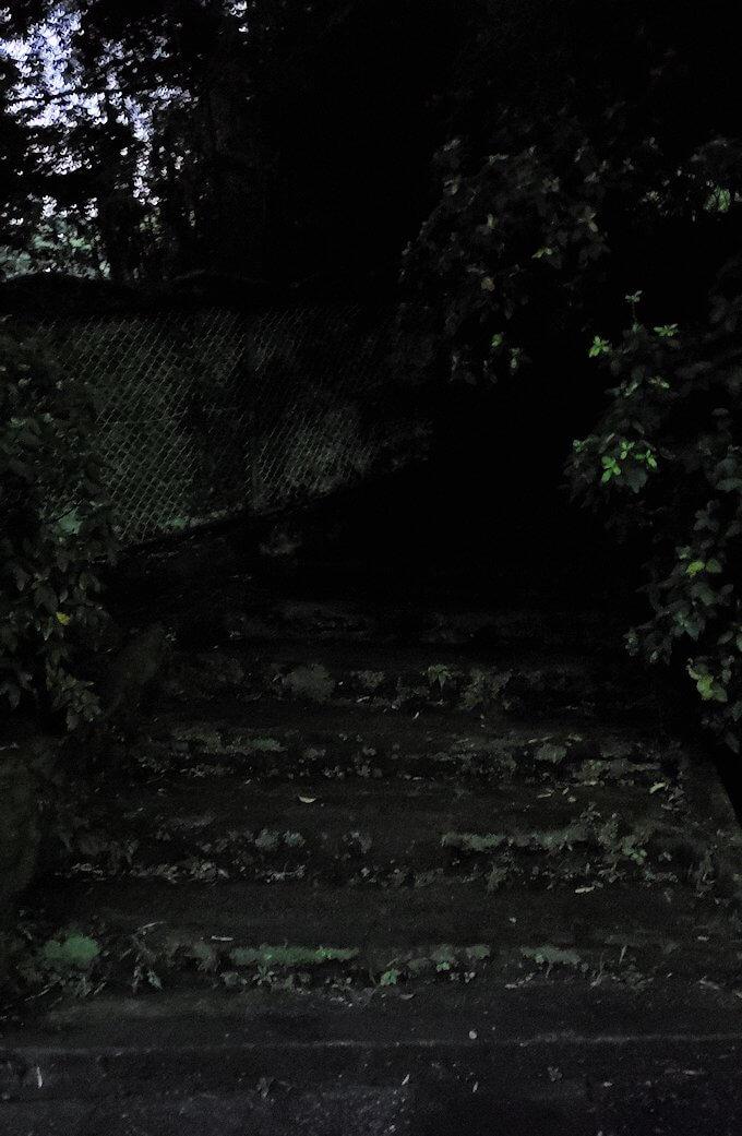鹿児島市内北側の多賀山に入る暗い道
