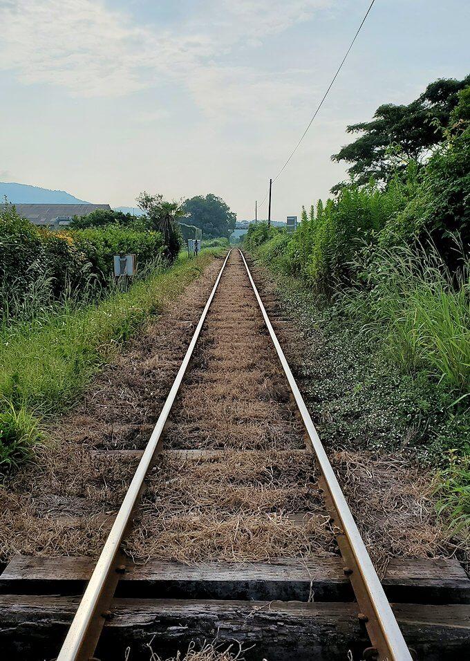 開聞駅近くの線路を眺める