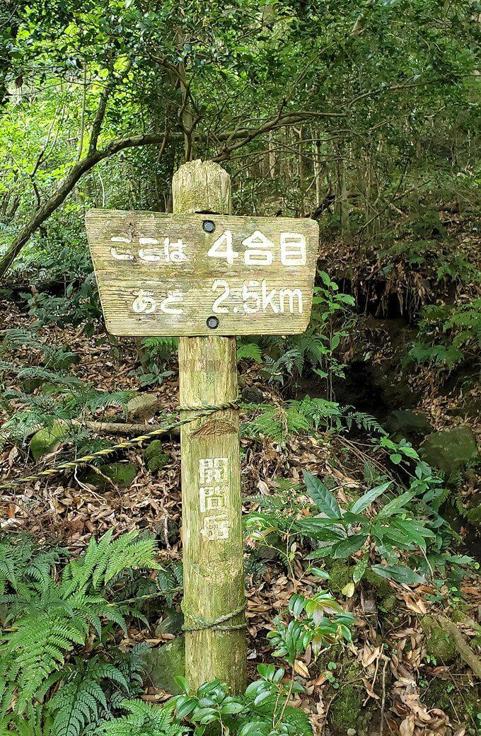 開聞岳登山道4合目に到着-1