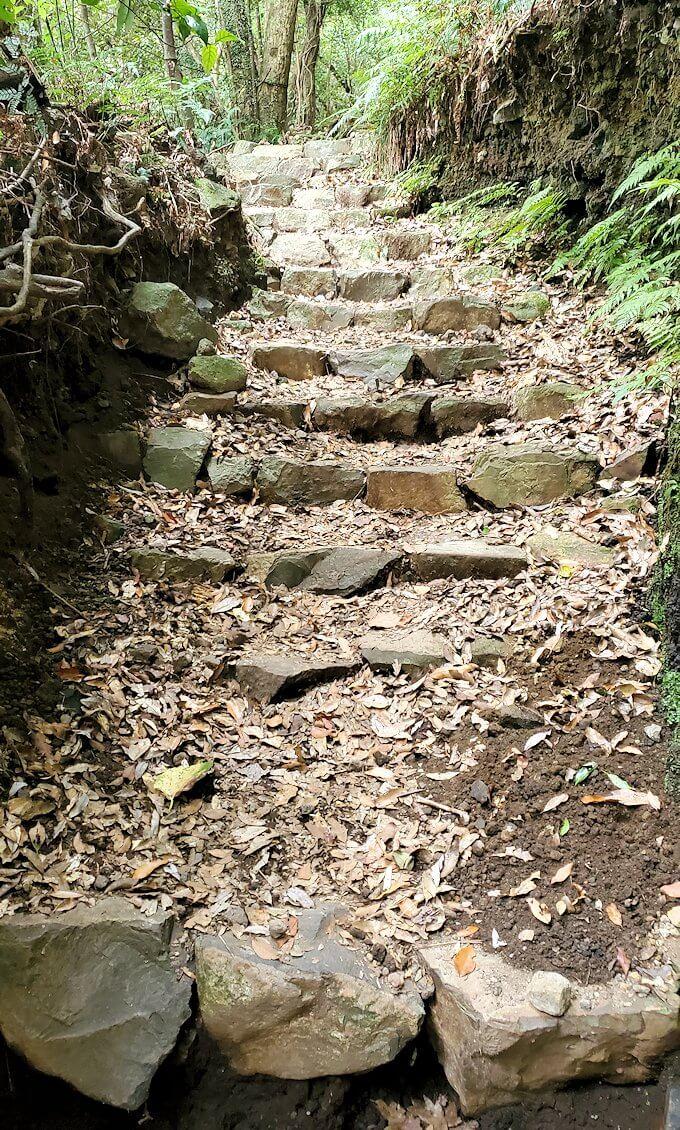 開聞岳登山道4合目にあった階段