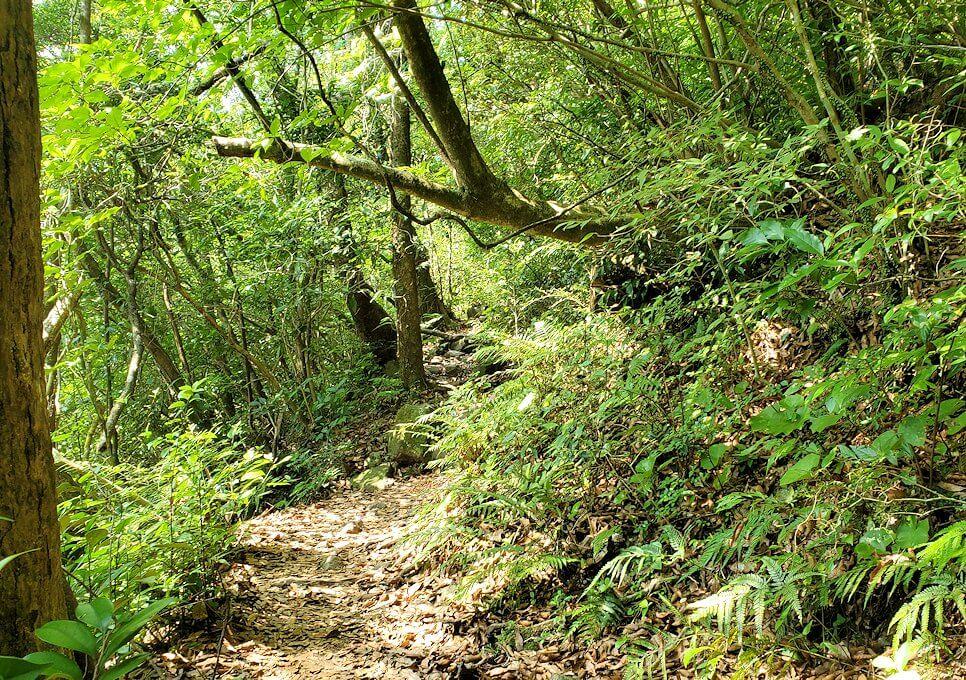 開聞岳登山道6合目から更に登る
